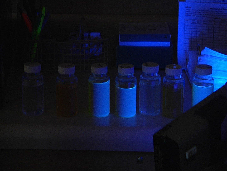 Water with E. coli contamination (neon white)