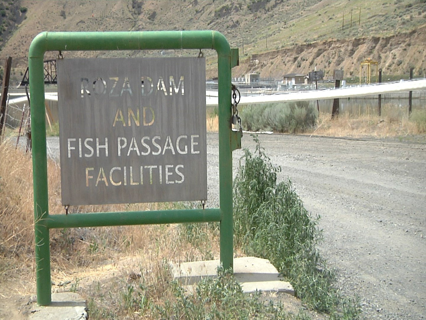 Officials say the Whoosh is nearly half the cost of a normal fish ladder.