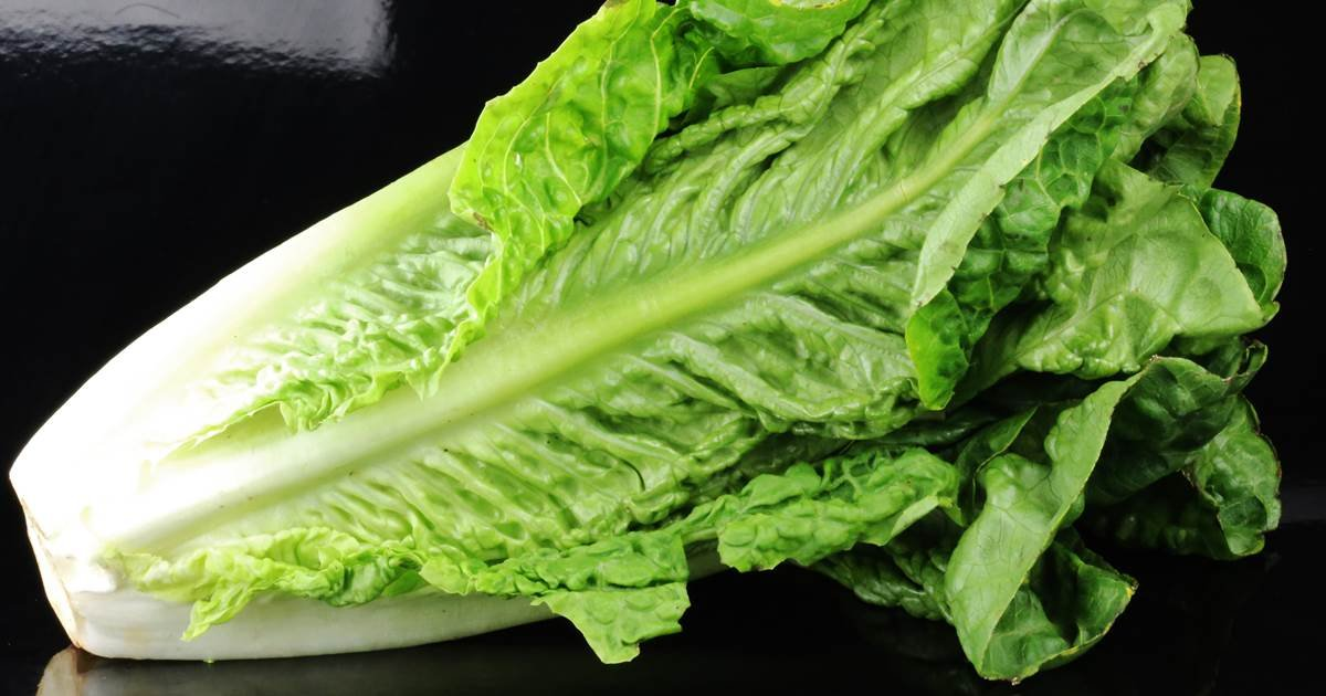 What consumers should know about the romaine lettuce-linked E. coli outbreak