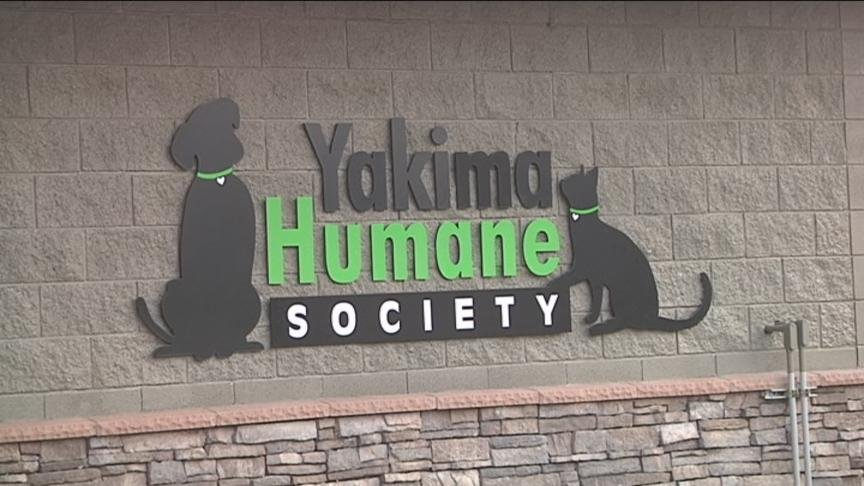 The Yakima Humane Society is looking for your help to win a national pet shelter contest.