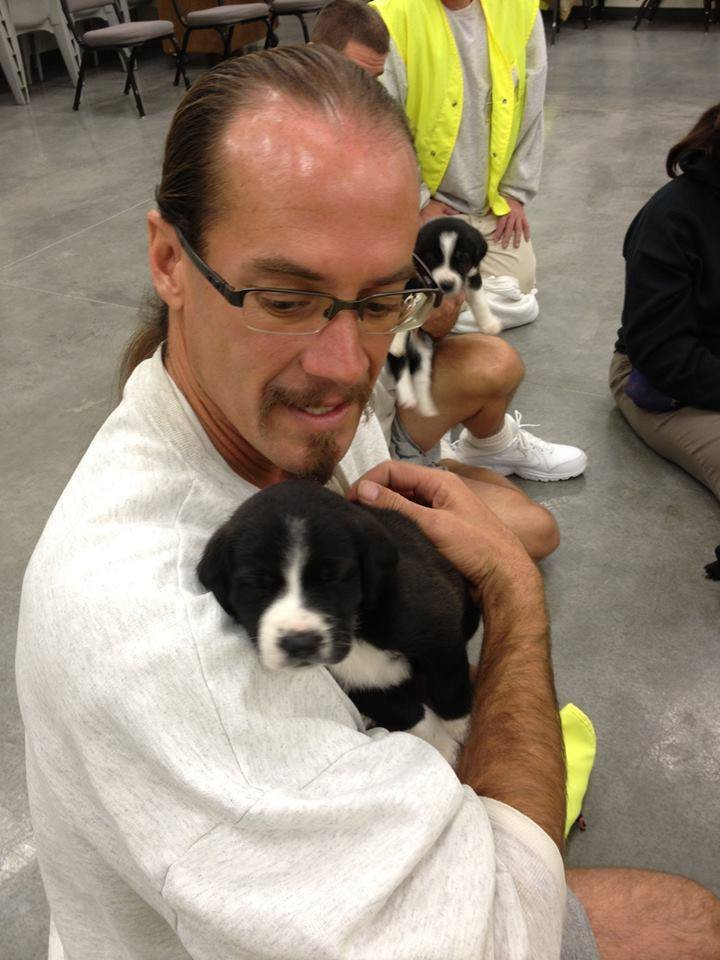 For the first time, puppies are roaming the grounds at the Coyote Ridge Corrections Center in Connell.