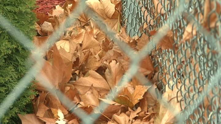 For the people of Richland, the way the city collects your yard debris is about to change.