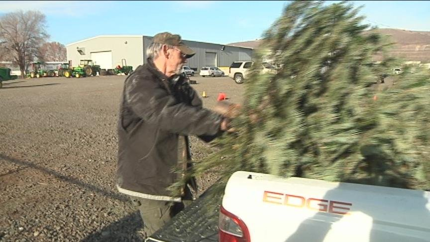 Now that Christmas has passed, it's time to start thinking about how you will get rid of your Christmas tree.