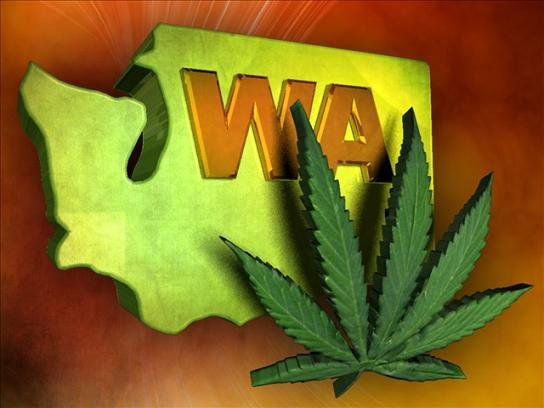 Officials have processed more than 6,600 marijuana business license applications in Washington state, and they still have more to go.