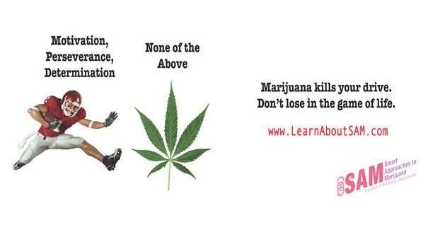 SAM's Anti-Marijuana Billboard