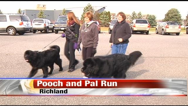 Grab your furry friends, Pet Over Population Prevention's (POPP) Pooch and Pal Run and Walk is this weekend at Columbia Point Marina in Richland.