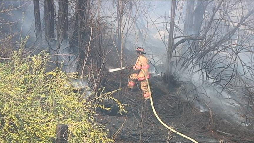 Downed power line caused a brush fire on the 300 block of Harrison Road in Selah Tuesday afternoon that threatened several homes.