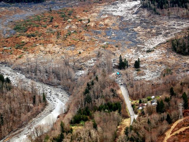Fire-damage forests vulnerable to landslides .