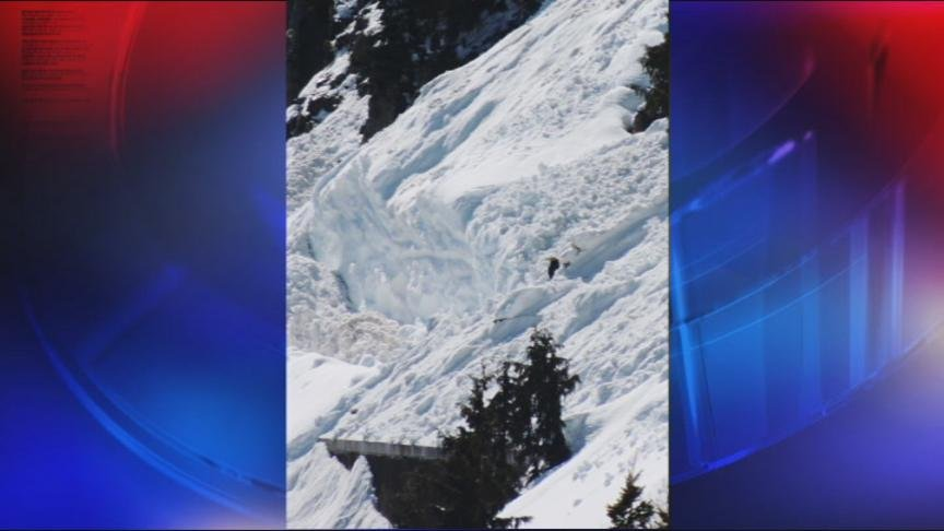 Courtesy WSDOT -- April 25th avalanche that naturally sloughed off the steep slopes of Chinook Pass.