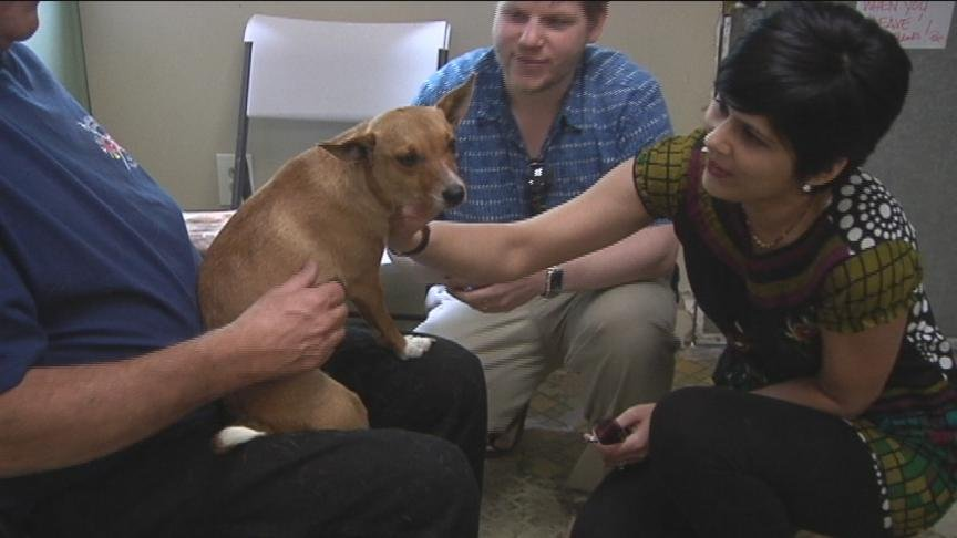 An abandoned and abused dog found a forever home on Friday.