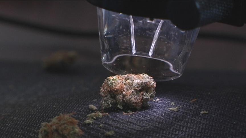 Stores across Washington could start selling recreational marijuana in a matter of weeks, but their product will have to go through a rigorous inspection process.