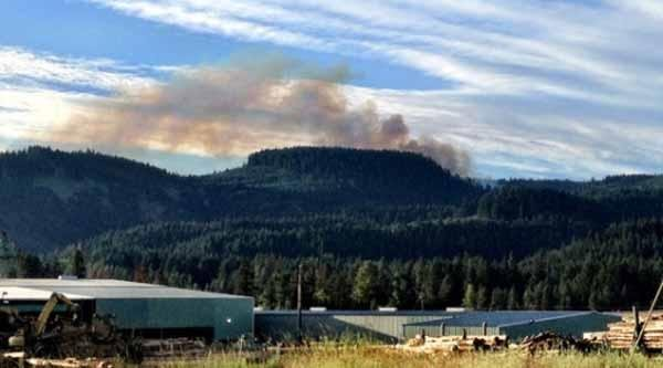Firefighters with the Oregon Department of Forestry are on the scene of a wildfire about 10 miles south of Hood River.