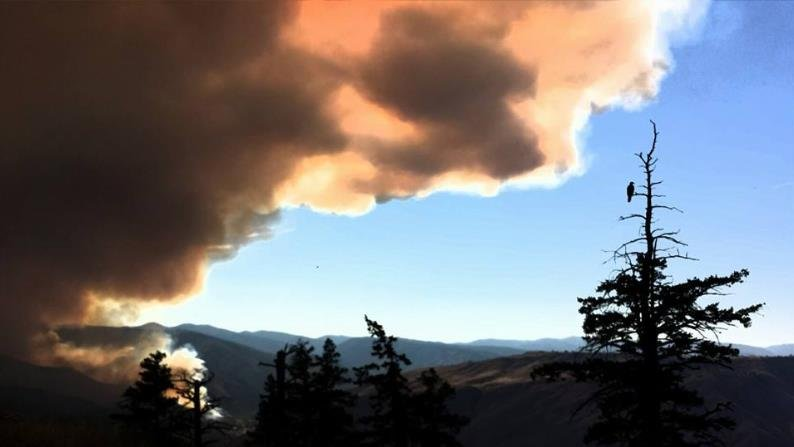 A wildfire burning in central Washington grew to 35 square miles on Sunday.