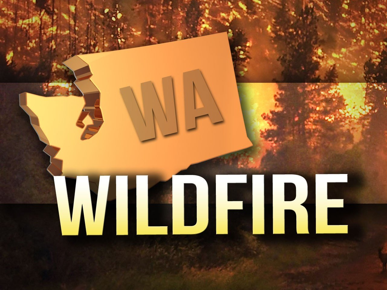 Wildfires are burning across our region in every direction. NBC Right Now is breaking down the areas with active flames.