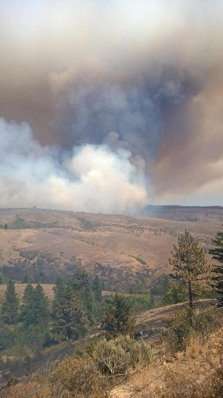 State fire assistance has been mobilized to help battle the Snag Canyon Fire in Kittitas County, north of Ellensburg. Courtesy: InciWeb