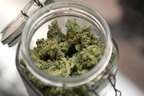 A judge is expected to hear arguments today over whether or not cities in Washington can ban marijuana businesses.
