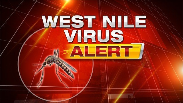 West Nile Virus found in Omak horse
