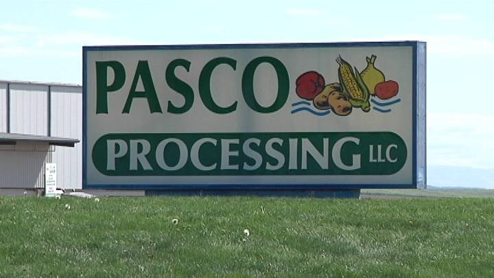 Tuesday morning was not the first time employees at Pasco Processing Center noticed strong smells of ammonia.