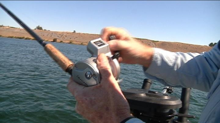 Last year we told you about a record breaking Columbia River Salmon run and this year that record is already broken.