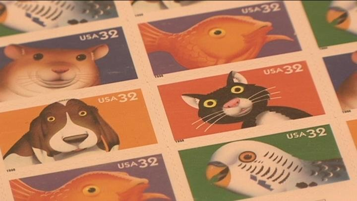 Stamp collectors browsed hundreds of stamps on display.