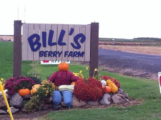 Bill's Berry Farm is having Apple and Pumpkin festival this month.