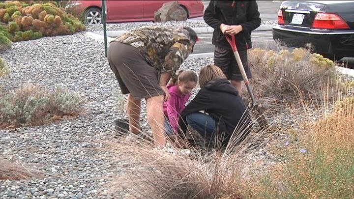Volunteers planted new plants to make McMurray Park more habitat friendly.