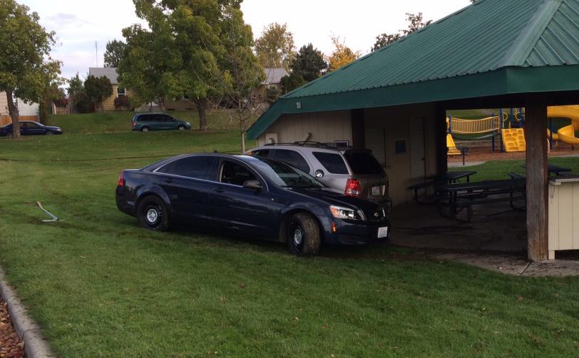 Stolen car chase ends in Richland park