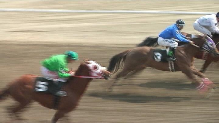 Horse racing brings in nearly $3 million a year for the Tri-Cities.