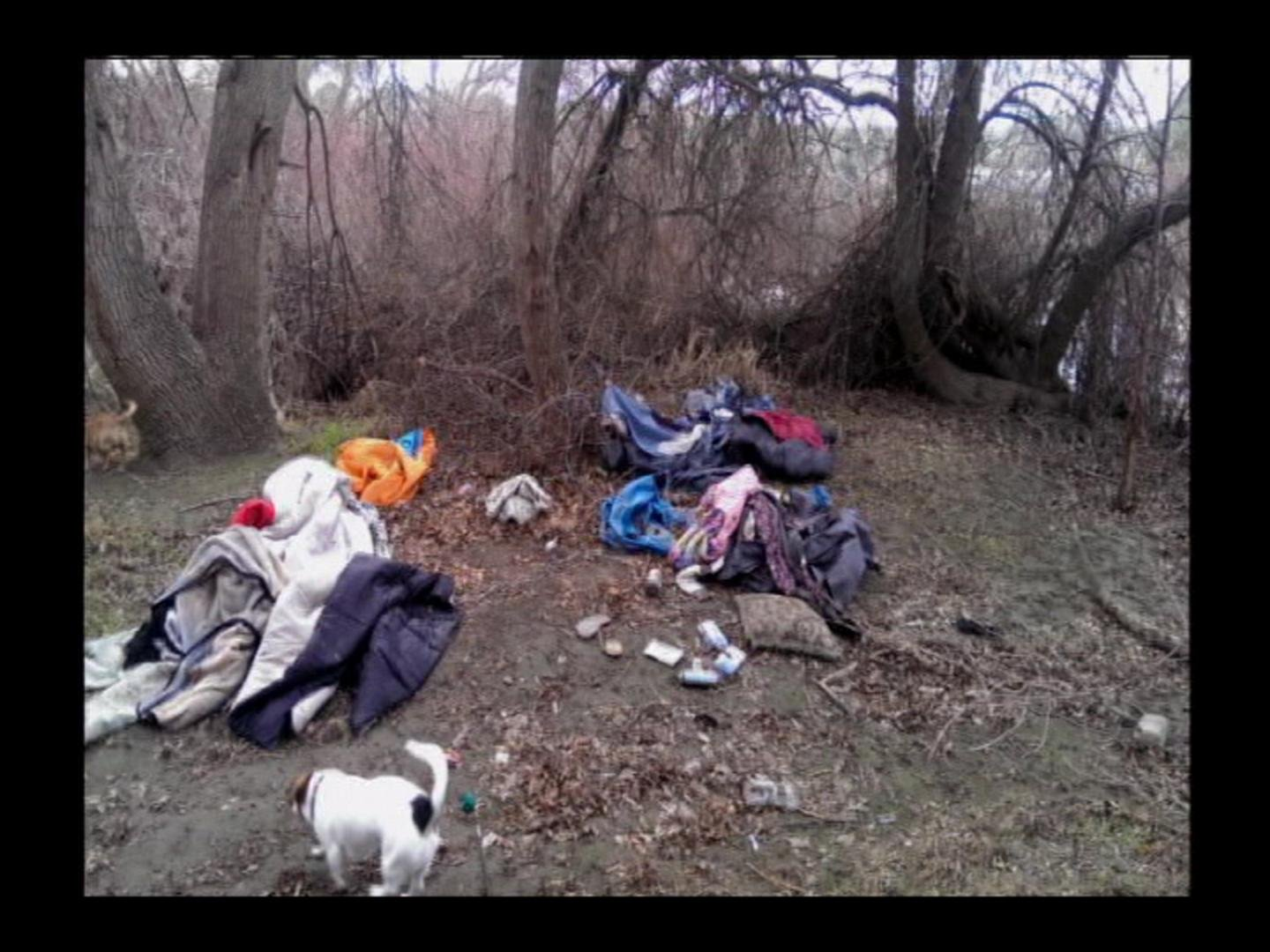 Items like tents, clothes, and even dogs have been found in the parks.
