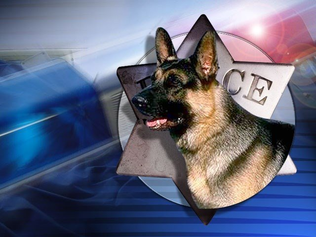 The Grant County Sheriff's Department is looking to bring back police dogs.