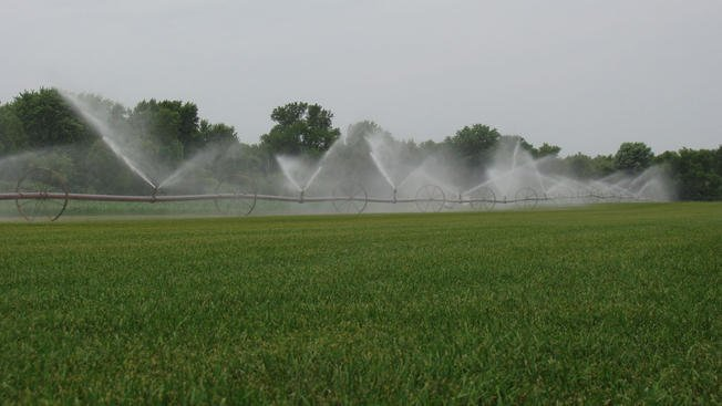 Columbia County orchardist fined for illegal irrigation during drought