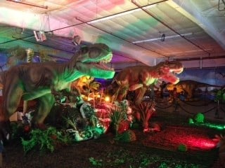 There is a dinosaur display with various kinds.
