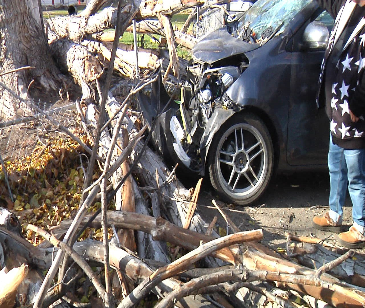 woman 39 s car is totaled after tree collapses on it nbc right now kndo kndu tri cities yakima wa. Black Bedroom Furniture Sets. Home Design Ideas