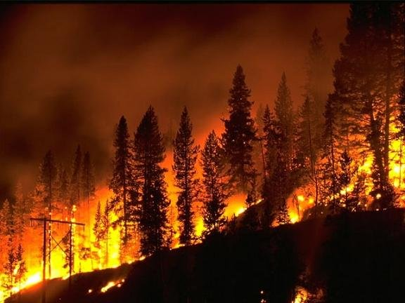 WENATCHEE, WA – Funding was approved this week for emergency post-fire projects recommended by the Central Washington Burned Area Emergency Response (BAER) team.  The team's report and recommendations were approved, along with its funding request of $314,