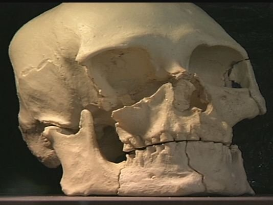 Bill introduced in Senate to return Kennewick Man to tribes